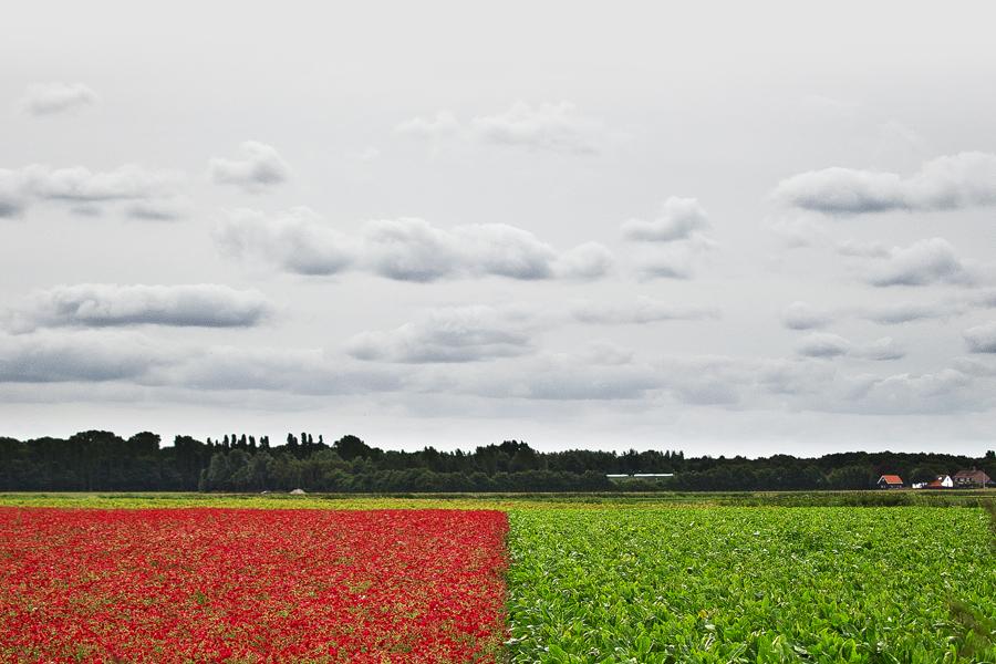 Agrarkunst