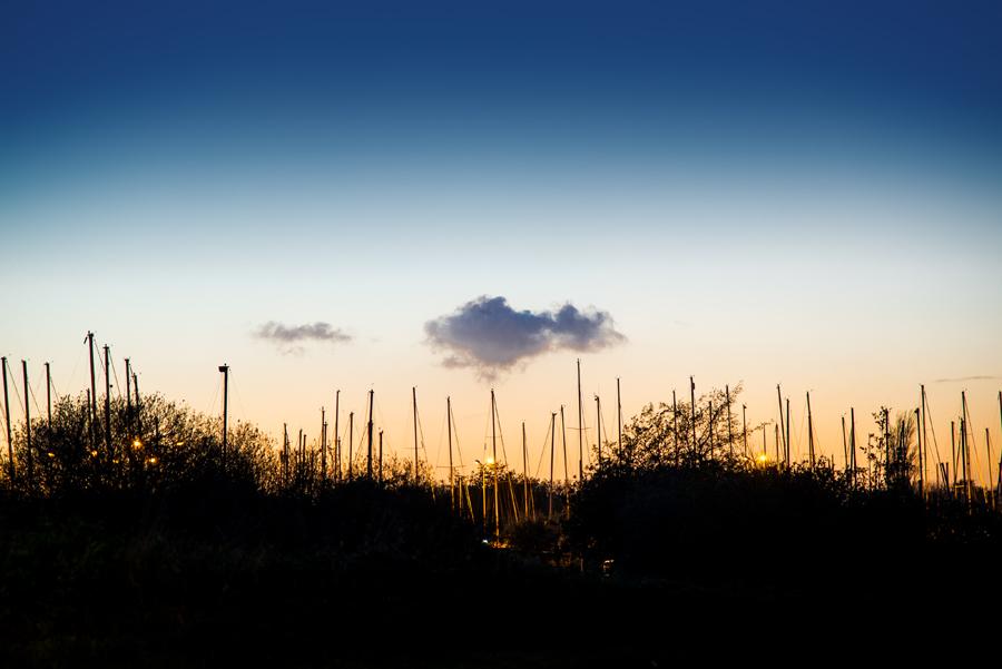 Yachthafen_Den_Osse_13.11