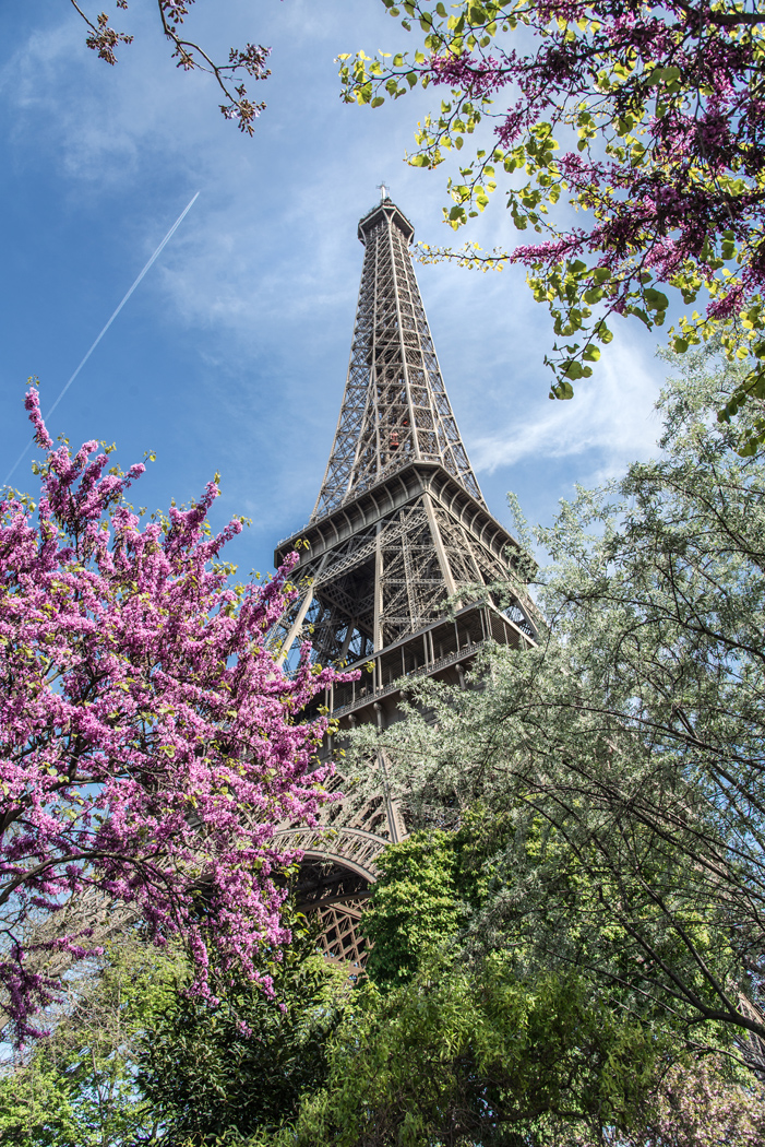 Paris_10.4.17_44